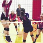 Falcons outfly Cardinals on the volleyball court