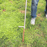 Early spring ideal time for soil testing